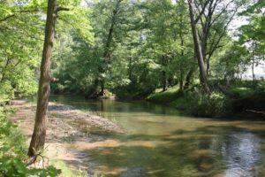 Zdjęcie Maluszyn rzeka